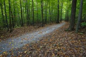 Sentier du parc du Mont Saint-Bruno