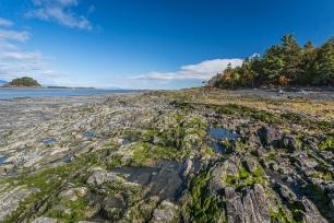 Île aux grues